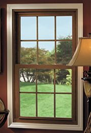 windows and doors dallas